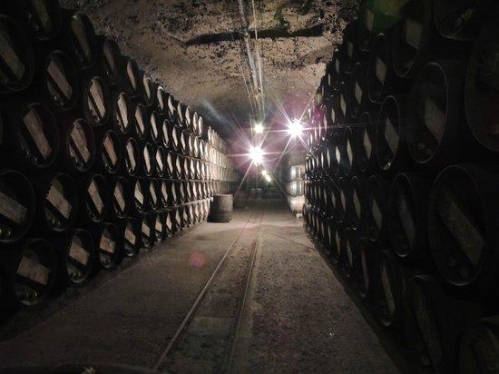 Bodegas Lopez de Heredia Vina Tondonia: bodegas interior
