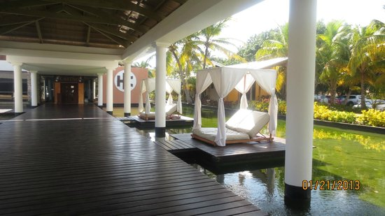 Catalonia Bavaro Beach, Casino & Golf Resort:                   Reposeras