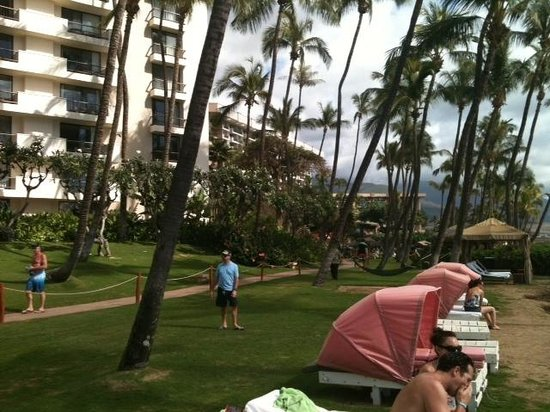 Hyatt Regency Maui Resort and Spa: View towards the hotel from the cabanas...