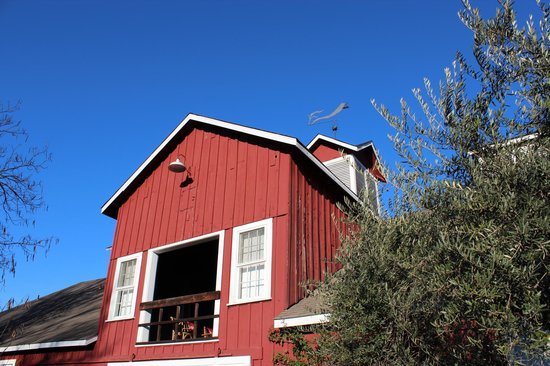 Frog's Leap Winery: The Barn
