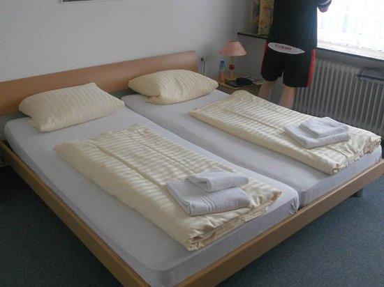 Gastehaus Bernau:                                     Appartement 3 chambres