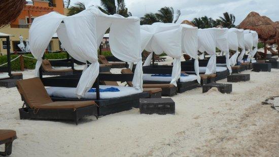 Ocean Coral & Turquesa:                   beach beds
