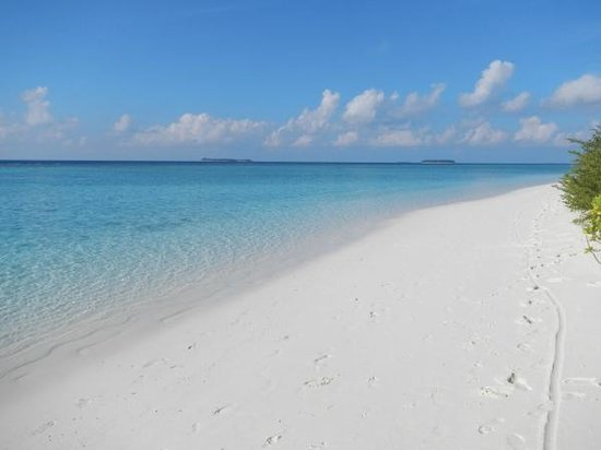 Angsana Velavaru:                                     beautiful white sand.
