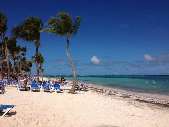 Natura Park Beach - EcoResort & Spa:                   Spiaggia