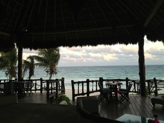 Las Ranitas Eco-boutique Hotel: view from the restaurant