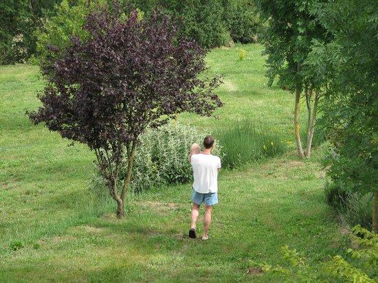 Borgo Corsignano:                   Evening walk with son on the estate garden