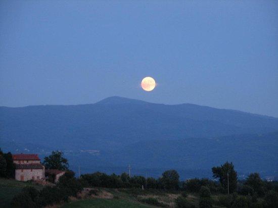 Borgo Corsignano:                   No comment ...