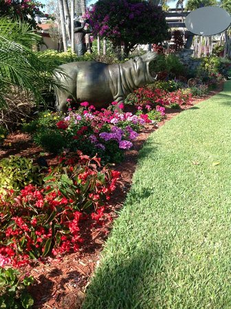 BEST WESTERN Naples Inn & Suites:                   This  is one of the many beautiful sites you will see at this beautiful resort