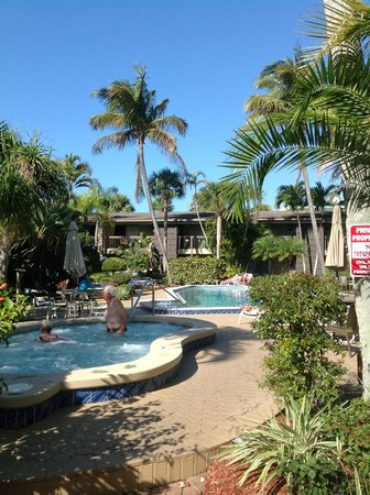 BEST WESTERN Naples Inn & Suites:                   This is one of the lovely pools and hot tubs this lovely Inn has to offer!