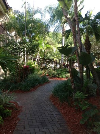 BEST WESTERN Naples Inn & Suites:                   There are so many views it is hard to choose the best because they are all the