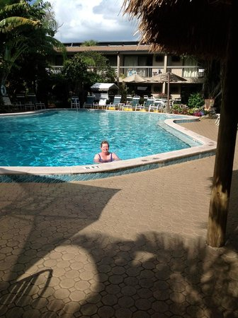 BEST WESTERN Naples Inn & Suites:                   This is the wonderful pool located just outside our deck garden and with many