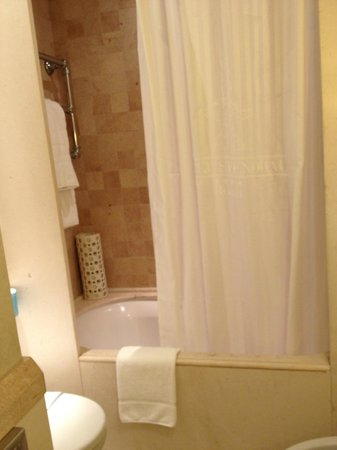 Hotel Stendhal: Shower/tub combo