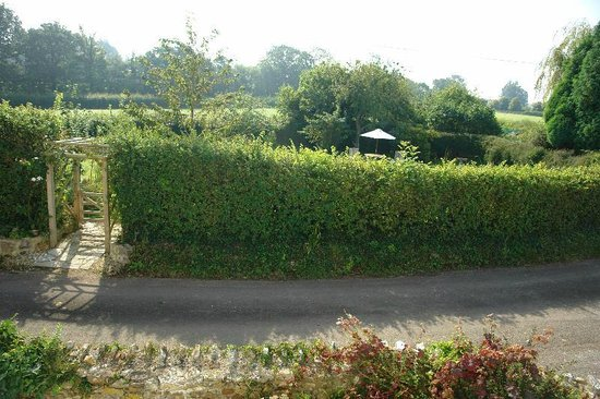Somerset Bed and Breakfast: View From The Cambry