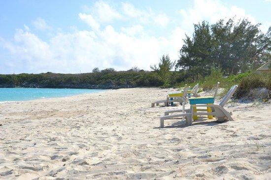 Paradise Bay Bahamas: Plage devant l'hôtel