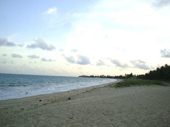 D'Aldeia Village Hotel :                   Praia