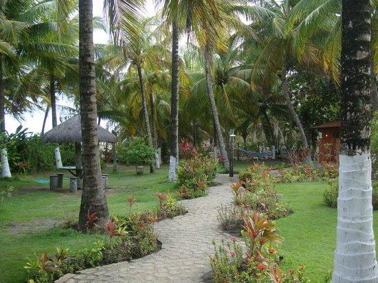 D'Aldeia Village Hotel :                   Jardins