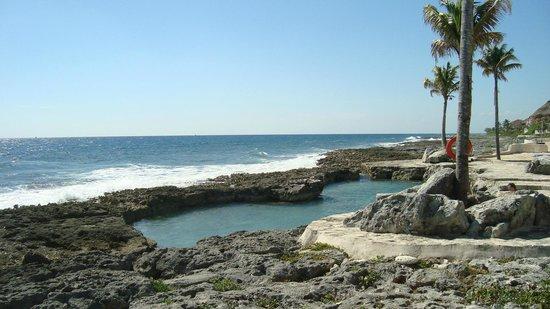 Dreams Puerto Aventuras Resort & Spa All Inclusive:                   saltwater pool, get your snorkel