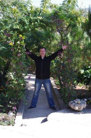Mini Hotel Edem:                   Растения и сад в Эдеме