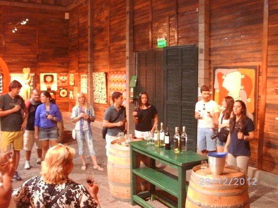 Familia Zuccardi: Antigua cava. Hoy: degustación vinos. U$S 3 (tres tipos de vinos)