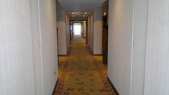 Alejandro I Hotel International Salta: Pasillos