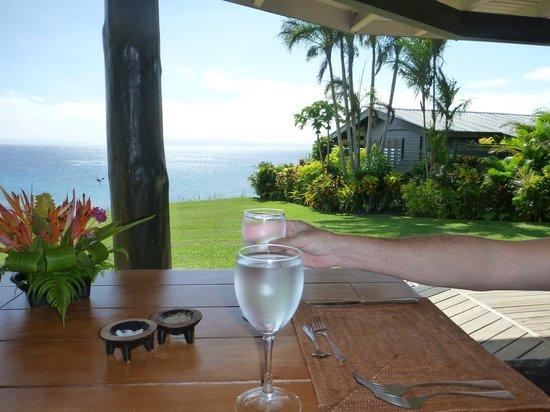 Taveuni Island Resort & Spa:                   view from the restaurant