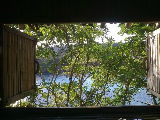 Great Huts:                   View from the bedroom of Bambu Tree House