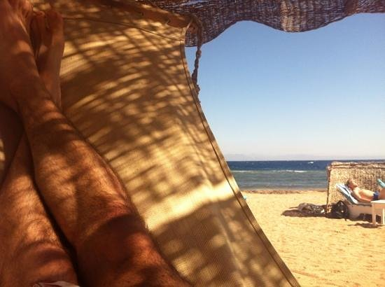 Coral Coast Hotel:                   hammock at Coral Coast