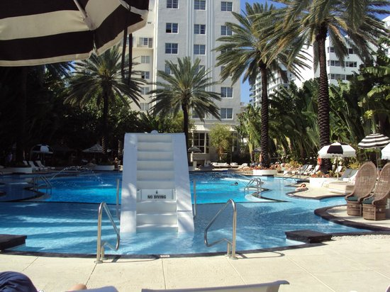 The Raleigh Miami Beach: Hermosa piscina tranquila y muchas opciones