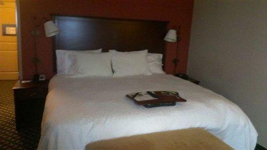 Hampton Inn & Suites Ankeny: Ki ng Size Bed