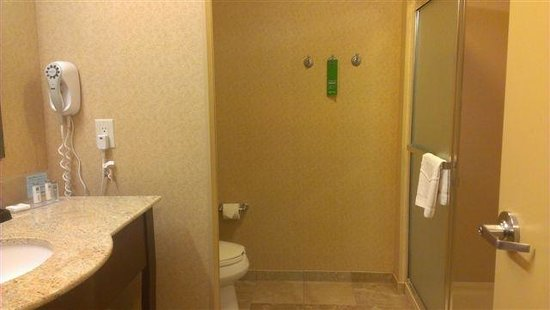 Hampton Inn & Suites Ankeny: Restroom
