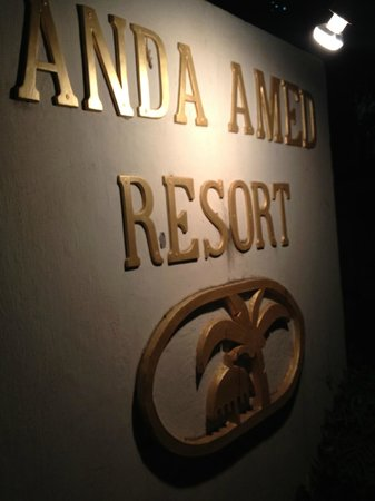 Anda Amed Resort:                   The hotel sign at night