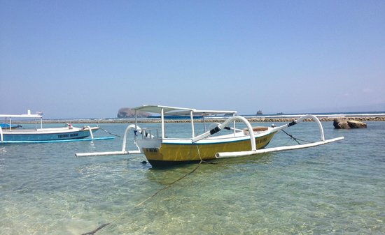 Anda Amed Resort :                   Boats across the road