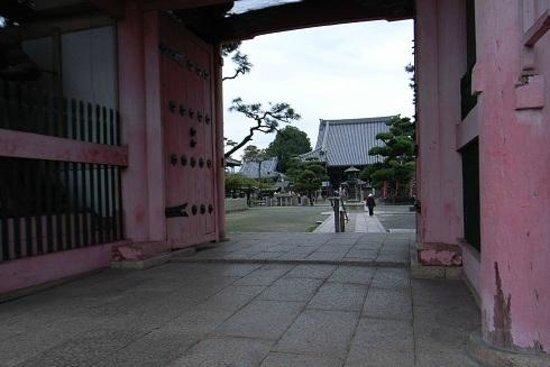Fujii-dera Kannon Temple:                   山門から境内を望む