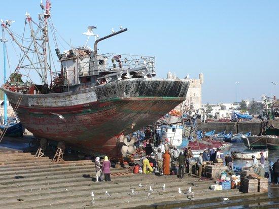Casa Guapa de Tamuziga:                   Hafen