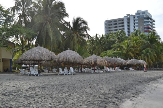 Estelar Santamar Hotel & Convention Center:                   beach