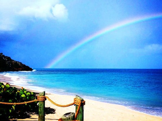 Galley Bay Resort:                   rainbow