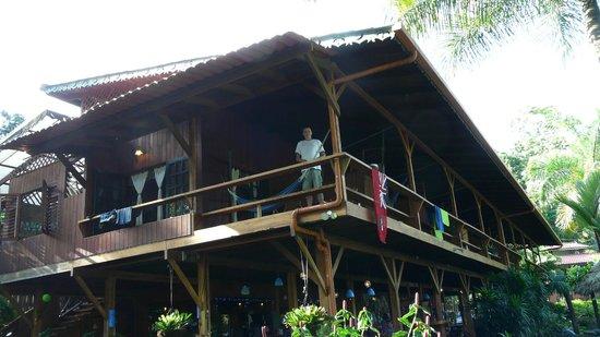 Hotel Banana Azul:                   Looking up at the Howler room                 