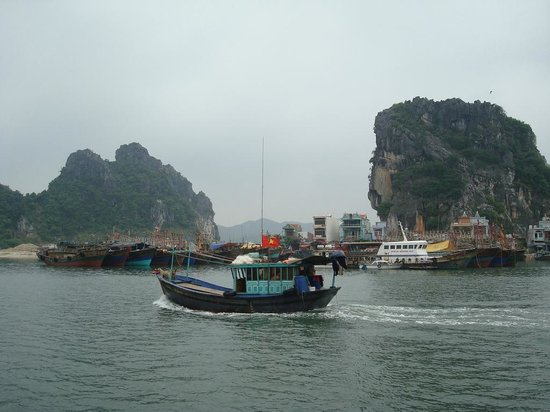 Sail Back in Time Day Tour : Quan Lan island in Halong Bay