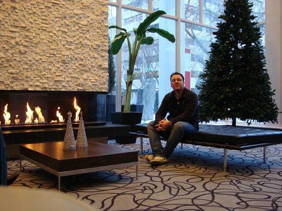 Matrix Hotel:                   hall de entrada, lareira para aquecer o frio no inverno