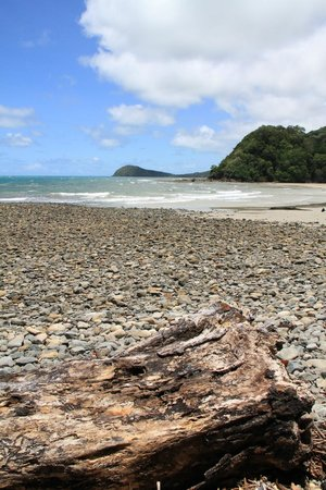 Australian Luxury Escapes:                   Cape Tribulation