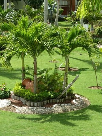 Grand Bahia Principe La Romana:                   garden-view from my room