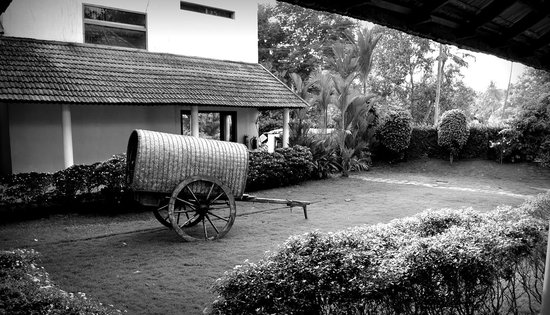 Lemon Tree Vembanad Lake Resort:                   A bullock cart in a small garden at the hotel