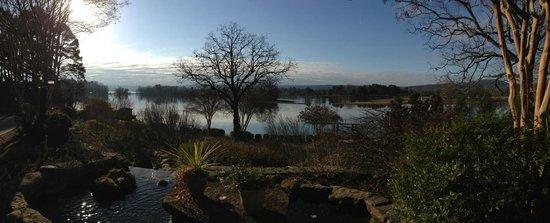 觀景台湖畔旅館照片