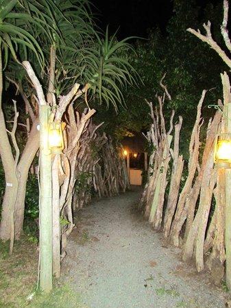 Protea Hotel Hluhluwe & Safaris: Sentier vers le souper Boma sous les étoiles