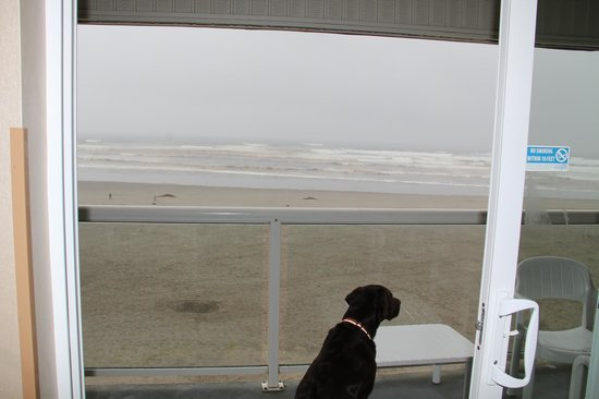 Shilo Inn Suites Hotel - Seaside Oceanfront:                   That view!