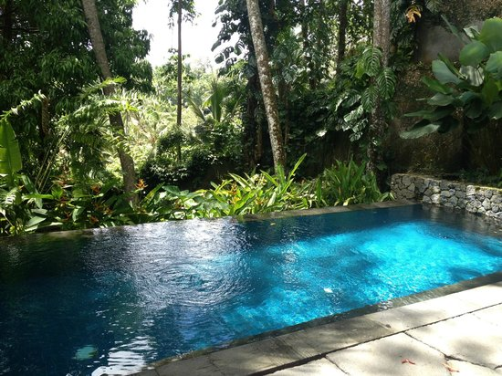 Kayumanis Ubud Private Villa & Spa:                   Private Pool in 3 BR Villa