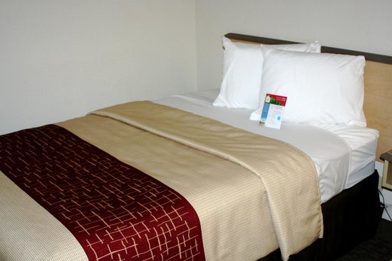 Red Roof Inn Detroit Metro Airport – Taylor: Our new beds