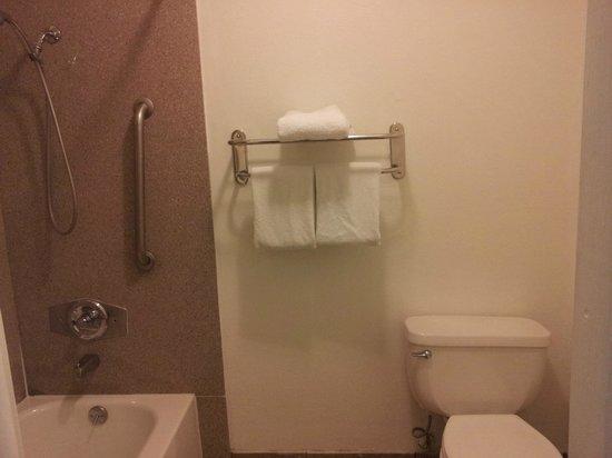Rodeway Inn & Suites :                   Shower