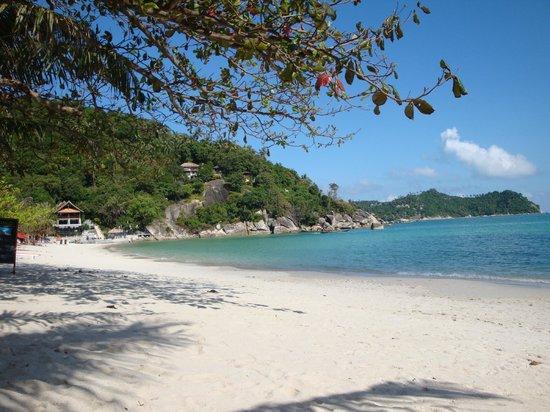 Koh Phangan Dreamland Resort:                   Herrlicher und ruhiger Sandstrand