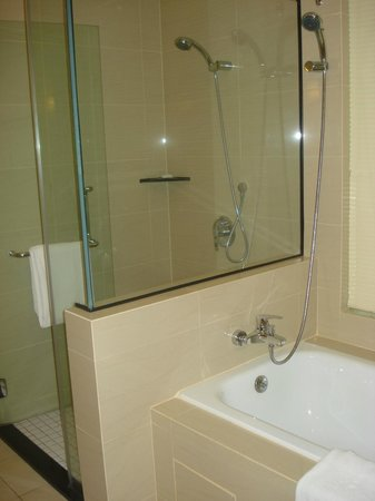 Holiday Inn Melaka:                   Shower and bathtub